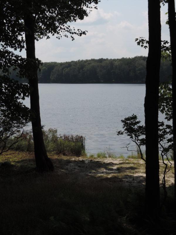 69 Lake Drive East 002